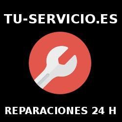 tu-servicio.es